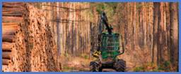 joysticks ns3 cần chỉnh hướng dùng cho ngành sản xuất gỗ spohn burkhardt